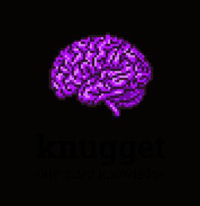 knugget